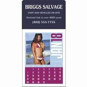 Swimsuit Stick Up Grid 2019 Calendar